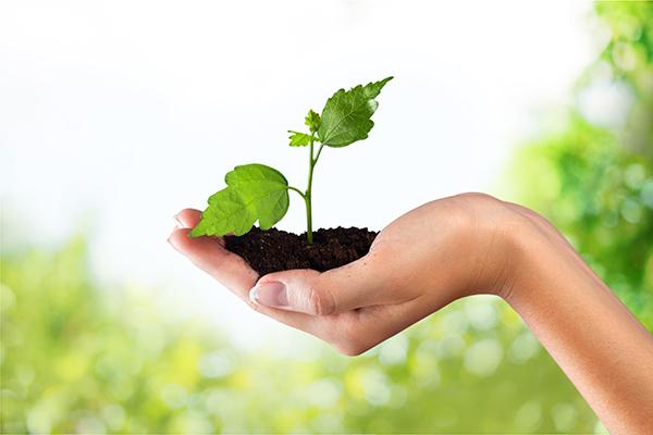 regularização ambiental de empresas e empreendimentos