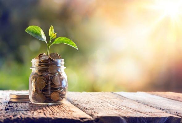taxa de controle e fiscalização ambiental - tcfa