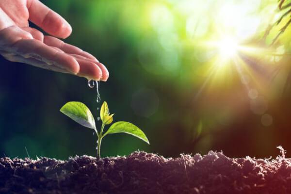 Quais atividades necessitam de licença ambiental