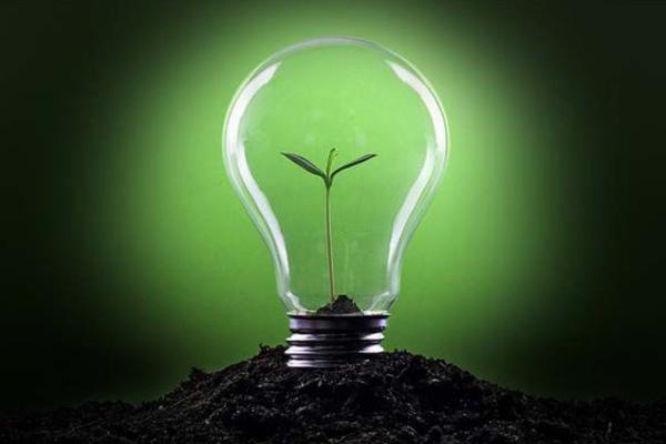 Empreendedorismo Verde negócios sustentáveis