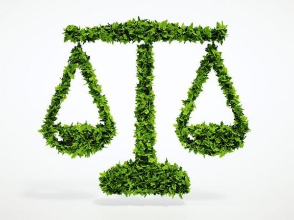 importancia-da-legislacao-ambiental