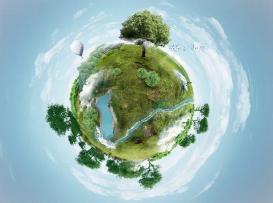 Sustentabilidade ambiental e dicas de como colaborar