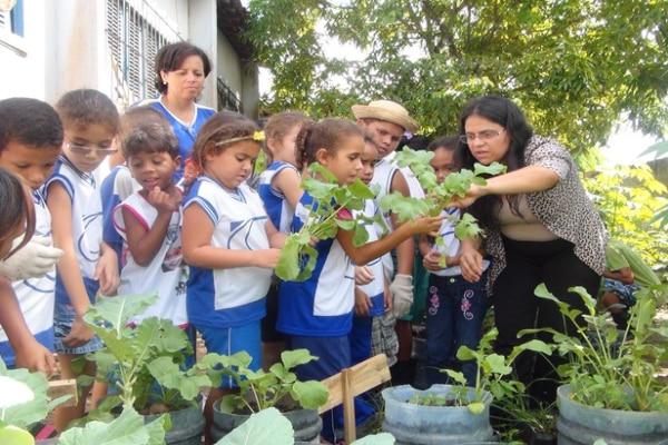 Programa de Educação Ambienta