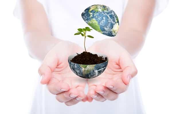 Blog de Meio Ambiente da Horizonte Ambiental