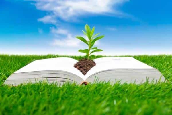 Blog ambiental