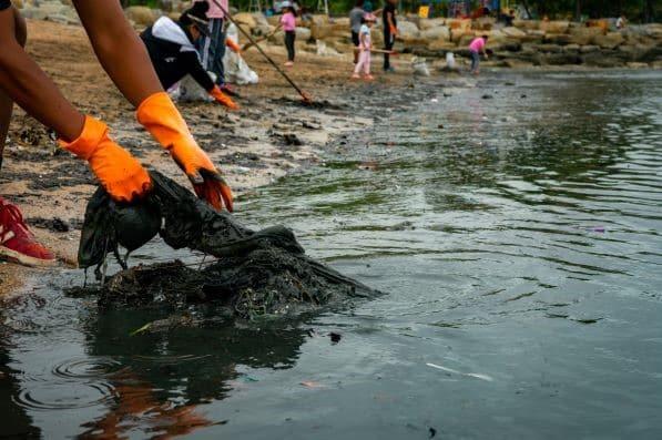 Desastres ambientais no Brasil e no Mundo