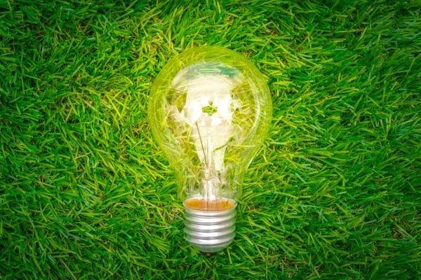mercado-ambiental