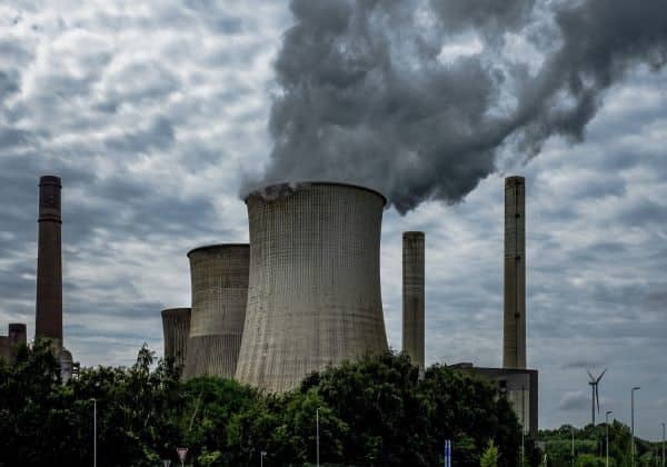 Projeto de Neutralização de Carbono