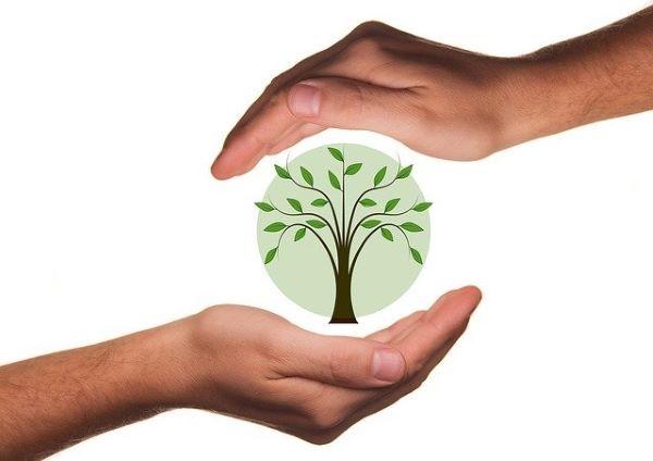 Empresas-de-Consultadoria-Ambiental