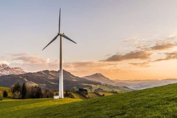 Por que investir em sustentabilidade