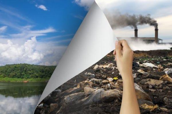 empresa-de-consultoria-ambiental