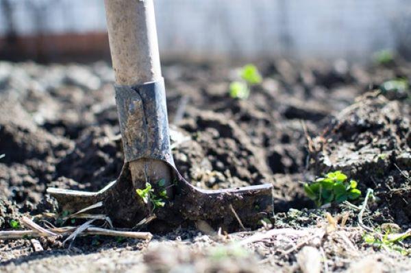 contaminação-do-solo