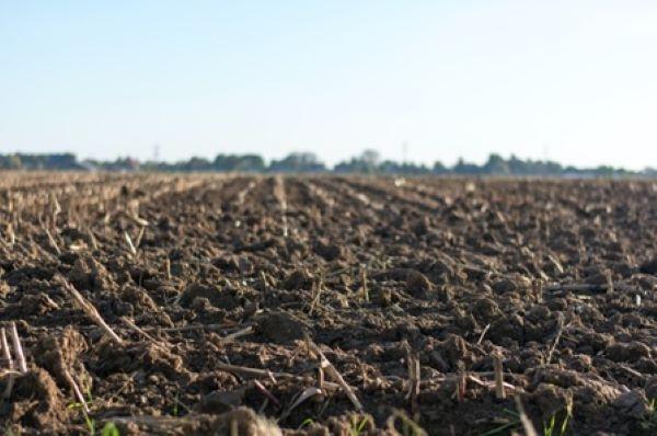 Riscos-de-contaminação-do-solo-Por-que-minha-empresa-deve-se-preocupar