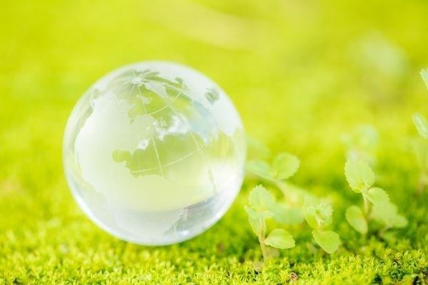 O-que-é-preservação-ambiental