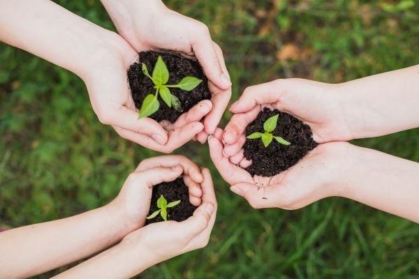 consciência-ambiental-nas-empresas