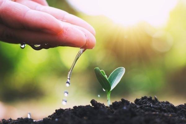 Como-melhorar-e-aumentar-a-consciência-ambiental-da-sua-empresa