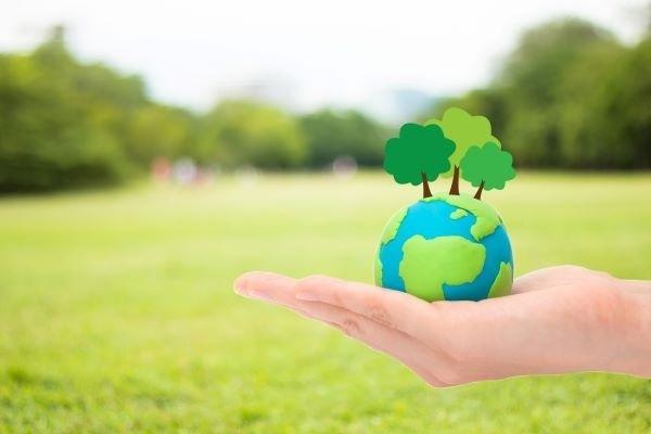 consciência-ambiental