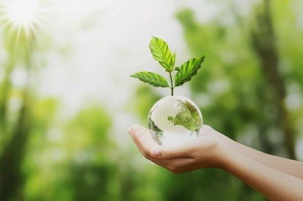 Dicas-para-sua-empresa-lucrar-mais-com-práticas-sustentáveis