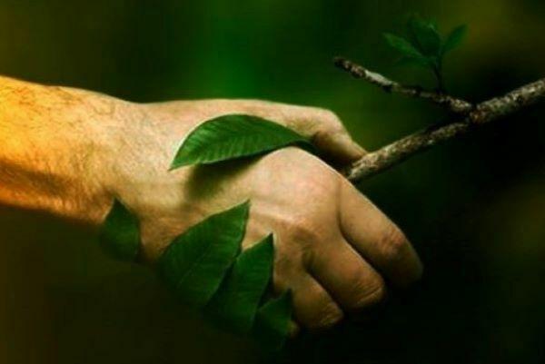 o-que-é-parceria-ambiental