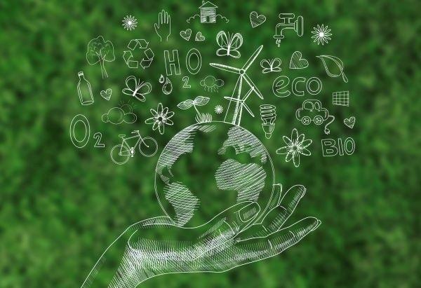 O-que-faz-a-Horizonte-Consultoria-Ambiental
